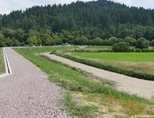 Wenn der Bach zum reißenden Strom wird:  Hochwasserschutz?